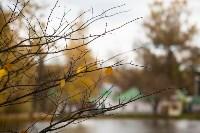 Золотая осень в Туле-2019, Фото: 88