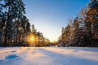 Снежное Поленово, Фото: 53