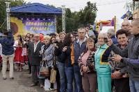 Алексей Дюмин посетил Епифанскую ярмарку, Фото: 20