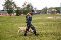 Испытания кинологов в Тульском спасательном центре, Фото: 48