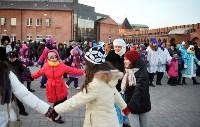 В Тульском кремле открылась новогодняя елка, Фото: 5