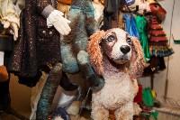 Закулисье Тульского театра кукол: Заглянем в волшебный мир детства!, Фото: 111