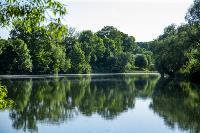 Летний день в Ясной Поляне, Фото: 46