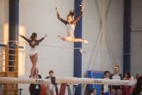 Первенство ЦФО по спортивной гимнастике, Фото: 101