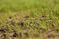 "Осмотр поля стадиона ""Арсенал"". 16.03.2015., Фото: 7"