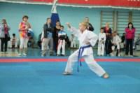 Открытое первенство и чемпионат Тульской области по каратэ (WKF)., Фото: 21