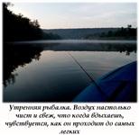 , Фото: 45