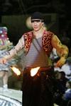В Тульском цирке прошла премьера аква-шоу, Фото: 3