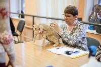 В Туле прошла выставка «Пряничные кошки» , Фото: 94