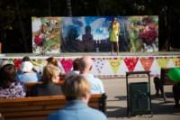 День города - 2014 в Центральном парке, Фото: 111