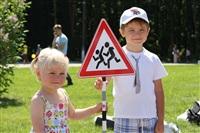 Туляков приглашают принять участие в акции ГИБДД, Фото: 6