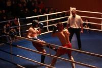 В Туле прошла матчевая встреча звезд кикбоксинга, Фото: 23