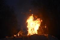 В ЦПКиО сожгли чучело зимы, Фото: 37