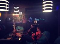 Free Form - Дым и Чай, Фото: 4