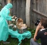 Сотрудники МЧС и Роспотребнадзора учились ликвидировать очаг сибирской язвы, Фото: 16
