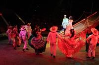Цирк «Вива, Зорро!» в Туле , Фото: 66