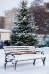 Тула после снегопада. 23.12.2014, Фото: 42