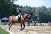 В Ясной поляне стартовал турнир по конному спорту, Фото: 50