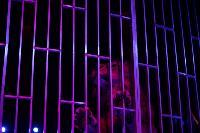Шоу фонтанов «13 месяцев»: успей увидеть уникальную программу в Тульском цирке, Фото: 236