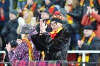 Арсенал - Томь: 1:2. 25 ноября 2015 года, Фото: 123