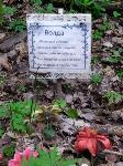 Кладбище домашних животных в Туле, Фото: 7