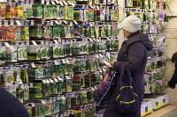 Леруа Мерлен: Какие выбрать семена и правильно ухаживать за рассадой?, Фото: 5