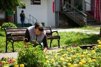 Телега из цветов, Фото: 4