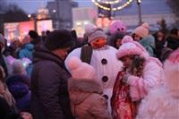 Открытие центральной елки в Новомосковске, Фото: 6