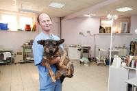 В какой ветеринарной клинике  лечить своего питомца, Фото: 10