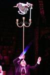 Цирк «Вива, Зорро!» в Туле , Фото: 33