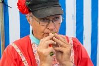 Фестиваль крапивы 2015, Фото: 23