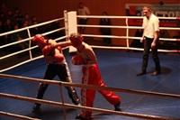 В Туле прошла матчевая встреча звезд кикбоксинга, Фото: 38