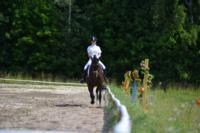 В Ясной поляне стартовал турнир по конному спорту, Фото: 86
