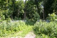Всехсвятское кладбище. Июль 2016, Фото: 26