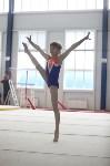 Соревнования по спортивной гимнастике на призы Заслуженных мастеров спорта , Фото: 57