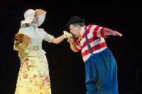 Тульский цирк, Фото: 35