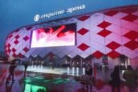 «Спартак»-«Арсенал». 9.11.2014, Фото: 8