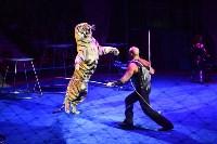 Цирковое шоу, Фото: 146