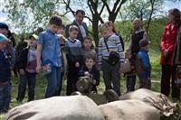 В Центральном парке воссоздали боевой подвиг советских солдат, Фото: 82