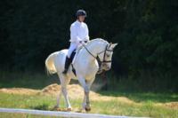 В Ясной поляне стартовал турнир по конному спорту, Фото: 7