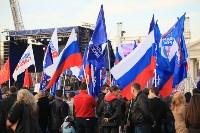 Празднование годовщины воссоединения Крыма с Россией в Туле, Фото: 60