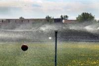 Соревнования газодымозащитной службы. 25.05.2015, Фото: 8