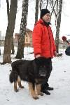 В Центральном парке прошёл рейд по выявлению нарушений выгула собак, Фото: 11