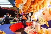 Главную ёлку Тулы открыли грандиозным фейерверком, Фото: 33