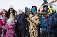 В Тульском кремле проходят масленичные гуляния, Фото: 29
