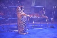 Цирковое шоу, Фото: 101