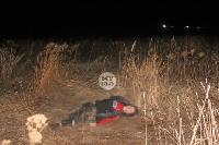 В жутком ДТП в поселке Рассвет погиб пассажир Audi A6, Фото: 8