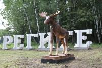 """Арт-объект """"Берегите лес"""" на въезде в Тулу, Фото: 3"""