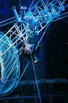 Шоу Lovero в тульском цирке, Фото: 20