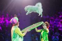 """""""Тайна пирата"""" в Тульском цирке, Фото: 99"""